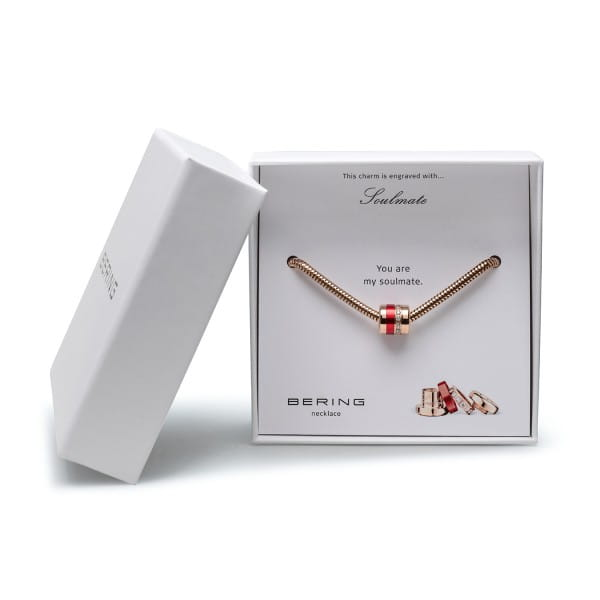 rosé gold glänzend | Charm Box 1